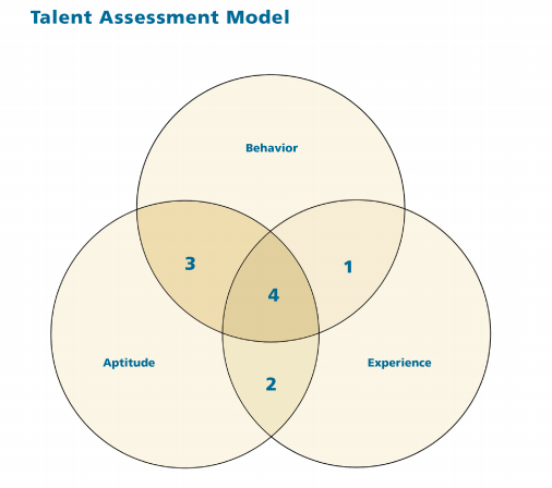 Forget About Generations—Focus on Assessing Talent